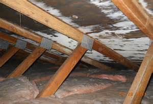 Black Or White Staining In Attic
